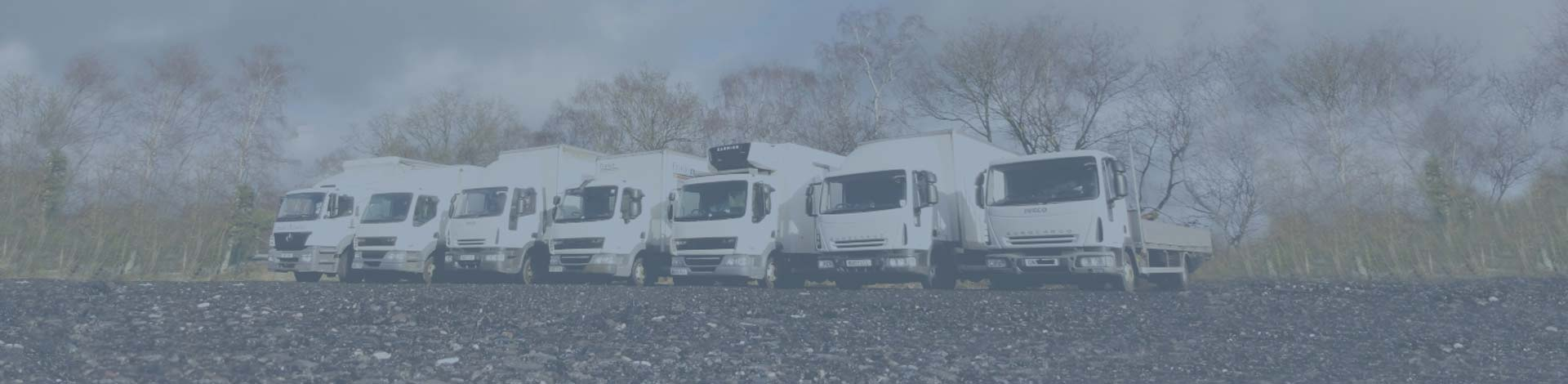 Fleet of Malcolm Taylor Trucks